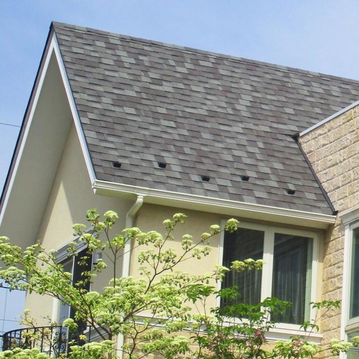 お得な屋根カバー工法パック(リッジウェイ)